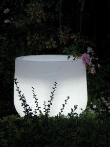 Verlichte plantenbak