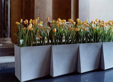 Modulaire plantenbakken en ruimtescheiders originele for Grote planten voor binnen