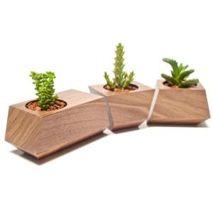 Plantenbakken Boxcar
