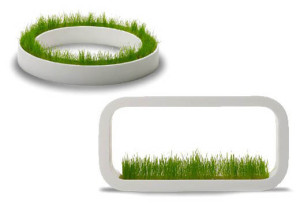 plantenbakken voor gras