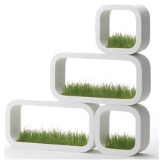 Grass planter plantenbak