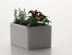 betonnen plantenbakken