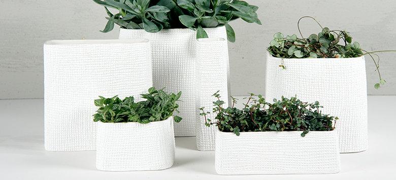 D&M plantenbakken