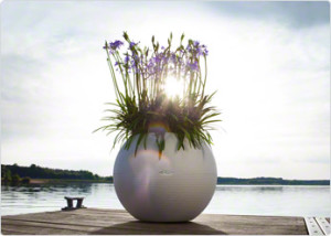 plantenbak met hydrosysteem